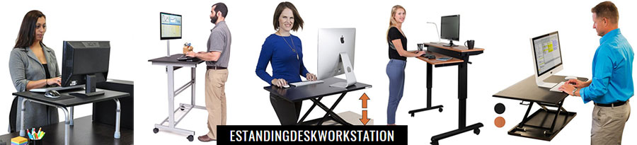 Standing Desk Workstation Banner